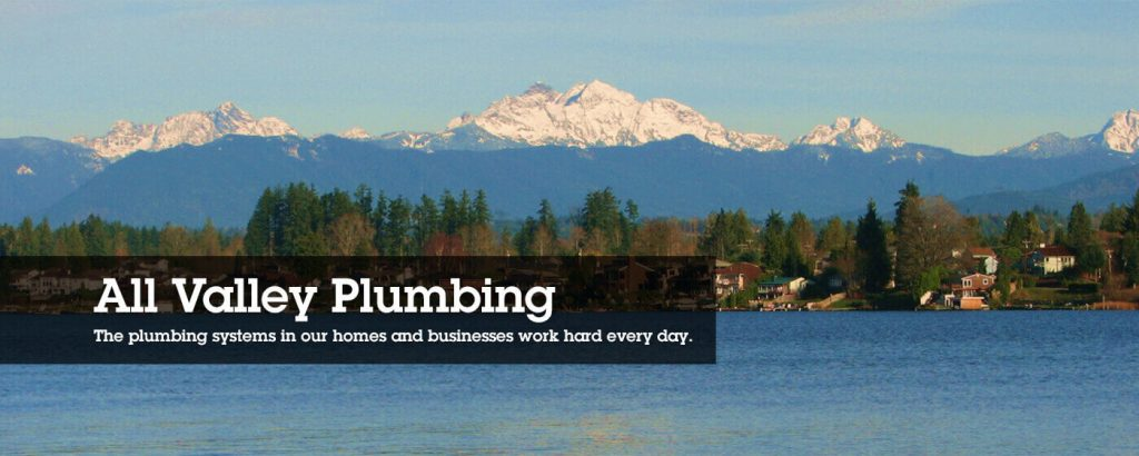 Plumbing Services in Smokey Point